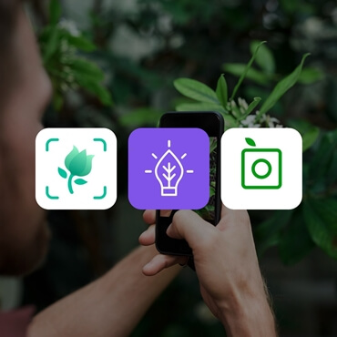 Flower name search app